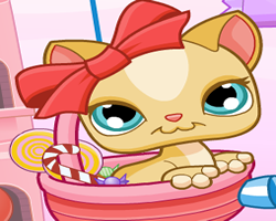 Littlest Pet Shop Kitty Candies